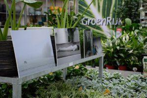 Beeldhoekers exposeren tussen het groen